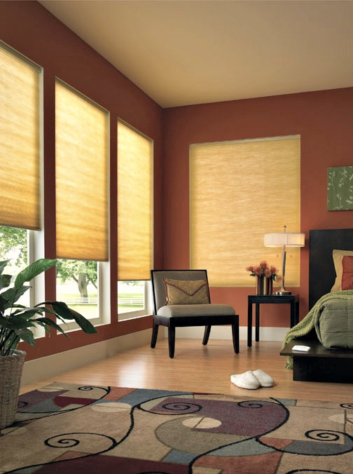 Window Safety Over M In Family Room